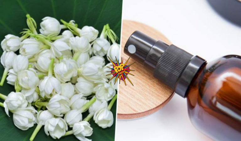 Mogra Water Benefits For Skin: Here's the Jasmine Mist That You Can Prepare At Home!